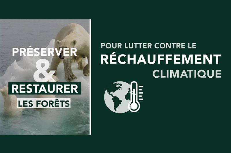 Reforestation Réchauffement climatique